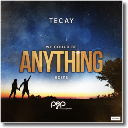 Cover: TeCay - Anything