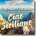 Cover:  Tom Pulse & Lucamino feat. C.R. Easy & Silvio Piseddu - Ciao Siciliano