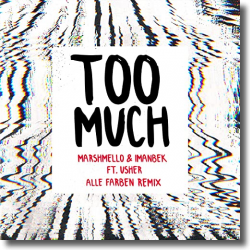 Cover: Marshmello & Imanbek feat. USHER - Too Much (Alle Farben Remix)
