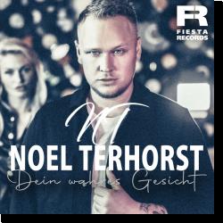 Cover: Noel Terhorst - Dein wahres Gesicht
