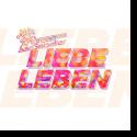 Cover: Andreas Gabalier - LiebeLeben