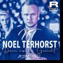 Cover: Noel Terhorst - Dein wahres Gesicht (Mike Hall Remix)