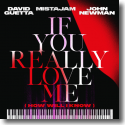 Cover: David Guetta x MistaJam x John Newman - If You Really Love Me (How Will I Know)