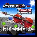 Cover: DJ Ostkurve feat. Die jungen Zillertaler - Schei wi dei wi du