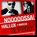 Cover:  Hallux feat. Marcus - Ai Se Eu Te Pego