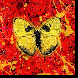 Cover: Ed Sheeran - Shivers