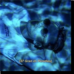 Cover: Clueso - 37 Grad im Paradies