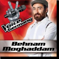 Cover: Behnam Moghaddam - Hurt