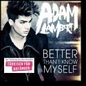 Cover:  Adam Lambert - Better Than I Know Myself