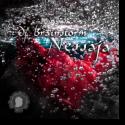 Cover:  DJ Brainstorm - Nessaja