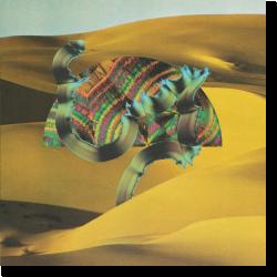 Cover: Django Django - Django Django