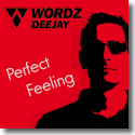 Cover:  Wordz Deejay - Perfect Feeling