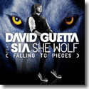 Cover: David Guetta feat. Sia - She Wolf  (Falling To Pieces)