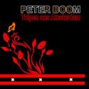 Cover:  Peter Boom - Tulpen aus Amsterdam