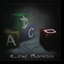 Cover: Bushido - Kleine Bushidos