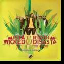 Cover: Mista Wicked & Riddim Disasta - Zruck zu de Wurzeln