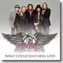Cover: Aerosmith - What Could Have Been Love
