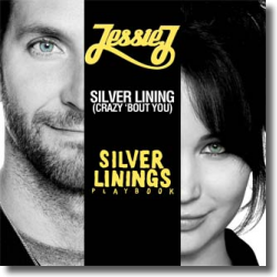 Cover: Jessie J - Silver Linings  (Crazy 'bout You)