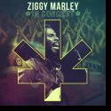 Cover:  Ziggy Marley - In Concert