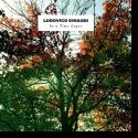 Cover:  Ludovico Einaudi - In A Time Lapse