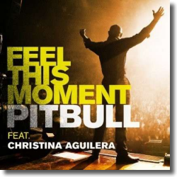 Cover: Pitbull feat. Christina Aguilera - Feel This Moment