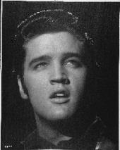 Elvis Presley: posthum für einen Grammy nominiert