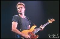 Sting: Sex auf der Club-Toilette