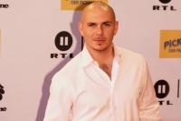 Pitbull: Koenig der Kollaborationen