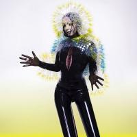 Björk berichtet über sexuellen Missbrauch am Set
