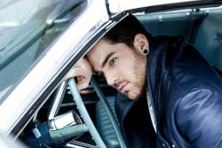 Adam Lambert  über Social Media