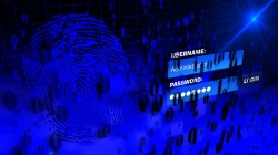 Hack-Gefahr: Die beliebtesten Musiker als Passwoerter