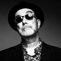 Fischer-Z: Single, Album und Tour