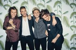 One Direction: Bandmitglieder feiern Jubilaeum