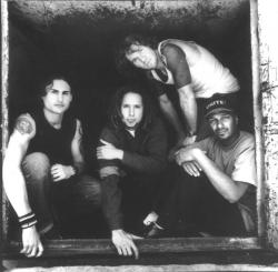 'Rage Against The Machine': Reunion und Shows