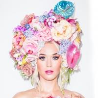 Katy Perry im Klopapier-Kleid
