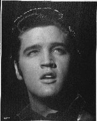 Elvis Presley: sein getragener Genitalschutz wird versteigert