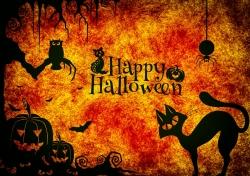 'Contactmusic': ultimative Halloween-Playlist